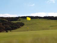 Clyne Golf Club